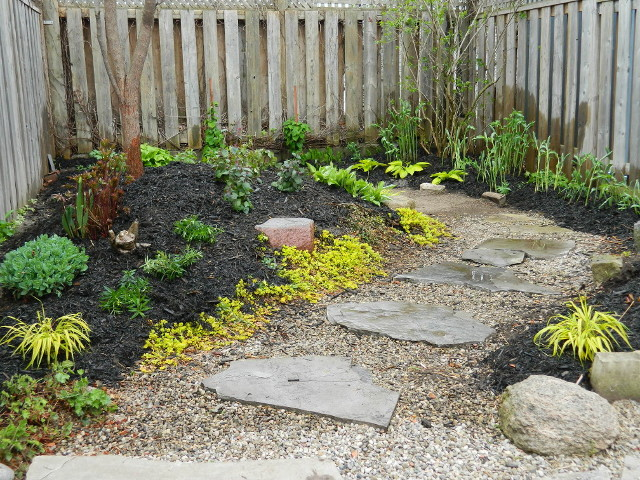 Danforth Coxwell backyard renovation after by Paul Jung Gardening Services--a Toronto Ecological Gardening Company