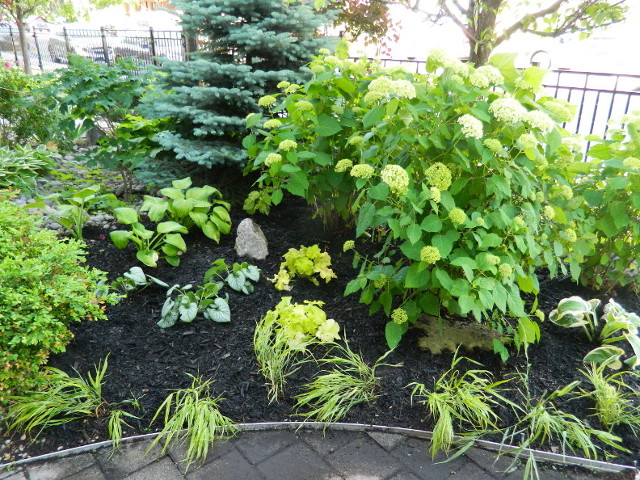 The Beach Front Garden Makeover After by Paul Jung Gardening Services--a Toronto Ecological Gardening Company